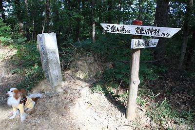 saitama_20161016_04.jpg
