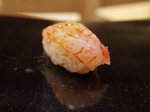 akisugita21.jpg
