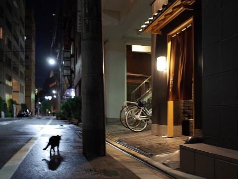 akisugita32.jpg
