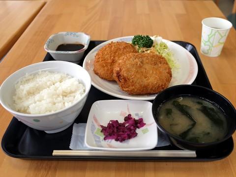 daishinteishoku11.jpg