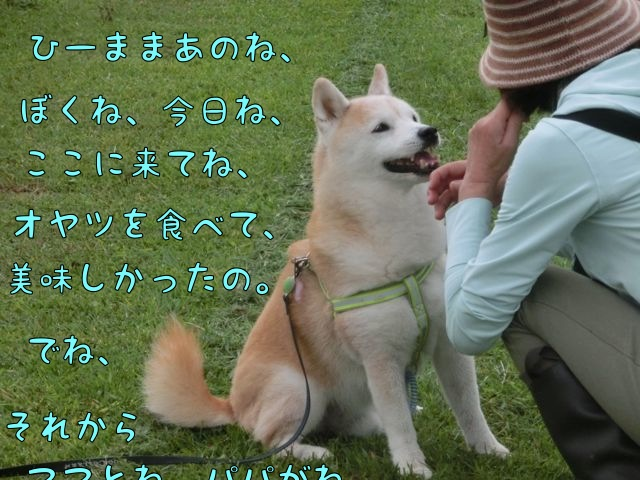 CIMG0618_201609200929593d7.jpg