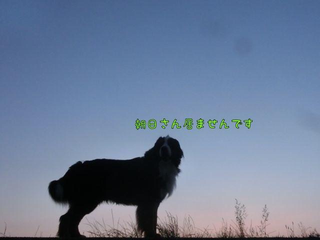CIMG5238_201605162102039bd.jpg