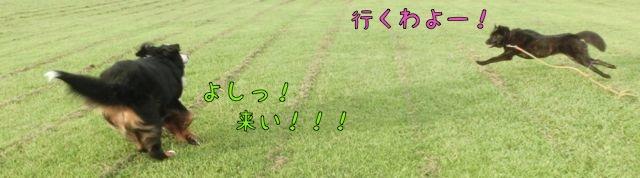 CIMG9867.jpg