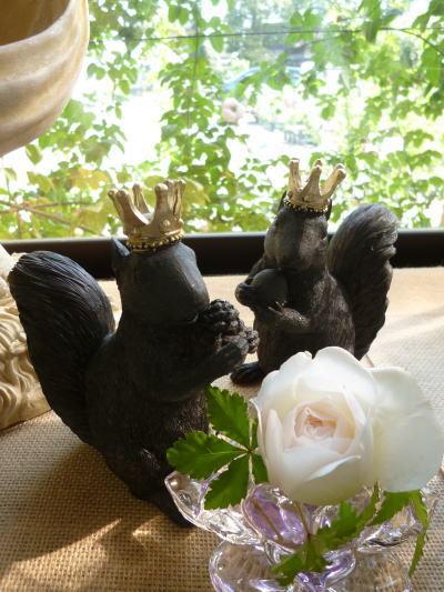 ブログ リスの王様1