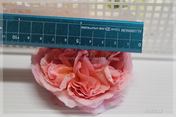 庭のバラ 手作り石鹸 ローズウォーター バラ 20160518