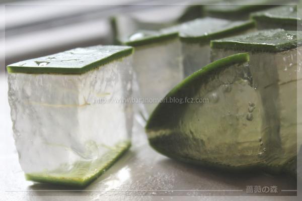 手作り石鹸 アロエ アロエベラ 20160531