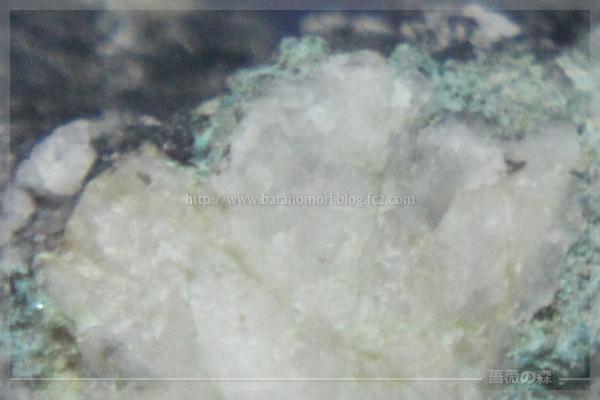 秩父 鉱石 201601013