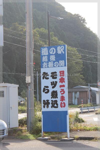 糸魚川 姫川薬石 翡翠 ヒスイ 20161016
