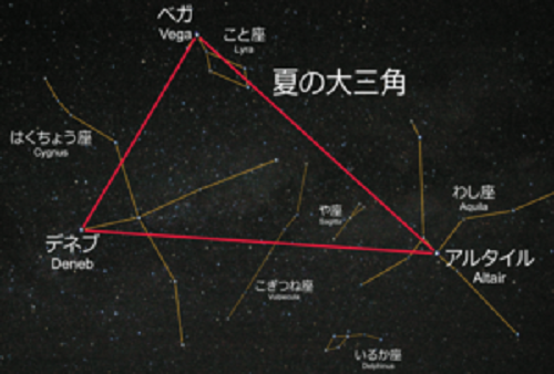 Summer_triangle_and_constellations夏大▽