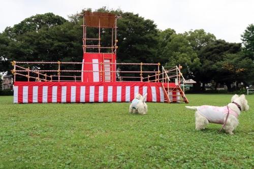bonnodoriyaguragachiisakunaru1.jpg