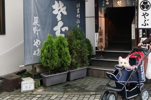 karuizawaniumaisobayahanai3.jpg