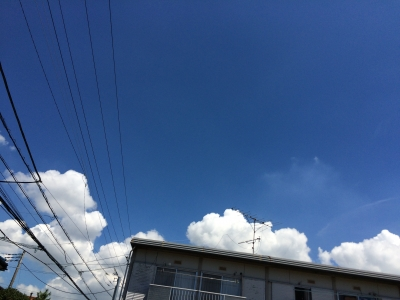 IMG_48830.jpg