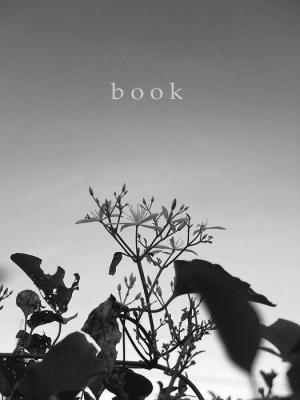 blog_book_banner03.jpg