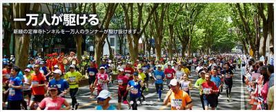 ハーフマラソン2016