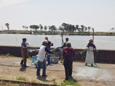 後片付け中の漁師さん達
