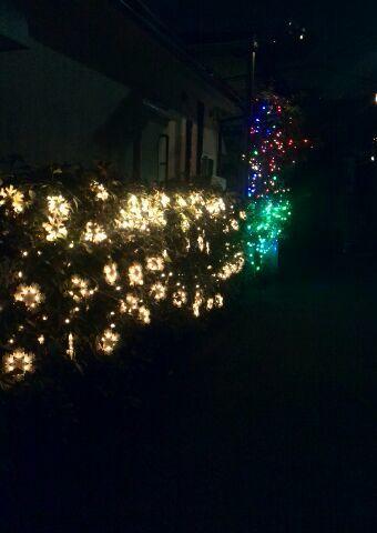 夜のレギュームinクリスマス