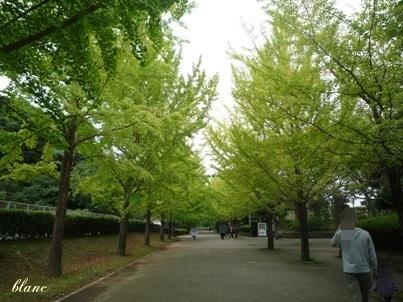公園(2)