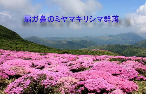 16kuzyuumiyama3.jpg