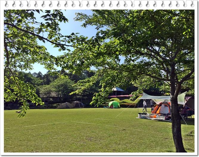 八重山公園キャンプ村4