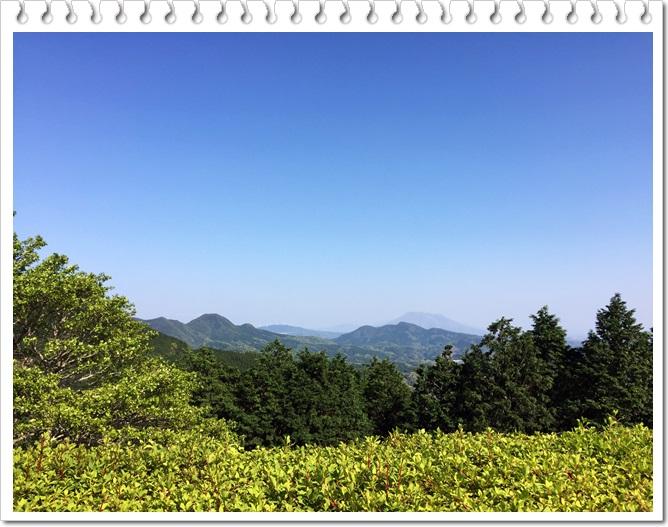 八重山公園キャンプ村5