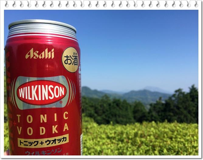 八重山公園キャンプ村6