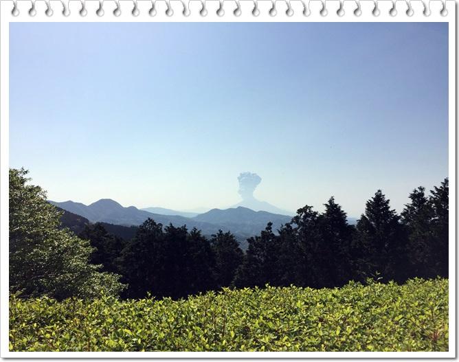 八重山公園キャンプ村3-6