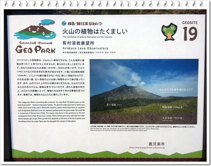桜島観光1