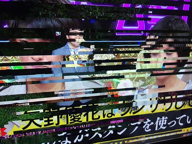 大雨テレビ