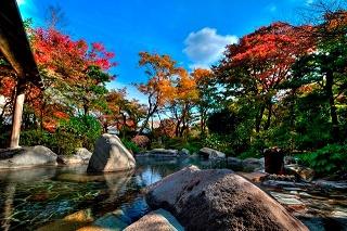 紅葉 温泉 秋冬