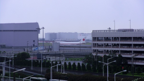 IMGP1100-600.jpg