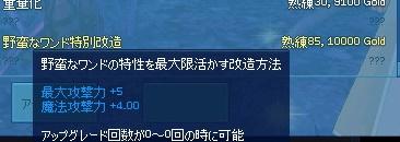mabinogi_2016_05_17_007.jpg