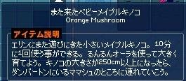 mabinogi_2016_11_06_002.jpg