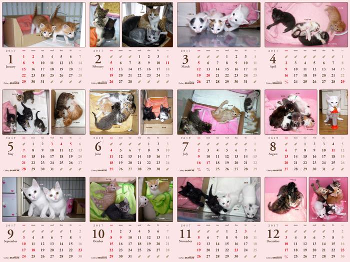 2017卓上カレンダー