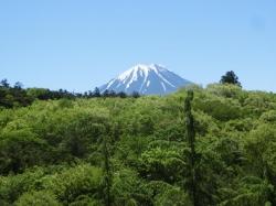 青木ヶ原樹海と富士 2016.05.12