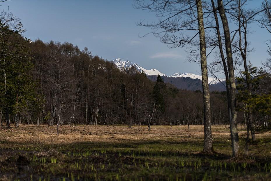 2016.04.16居谷里湿原8