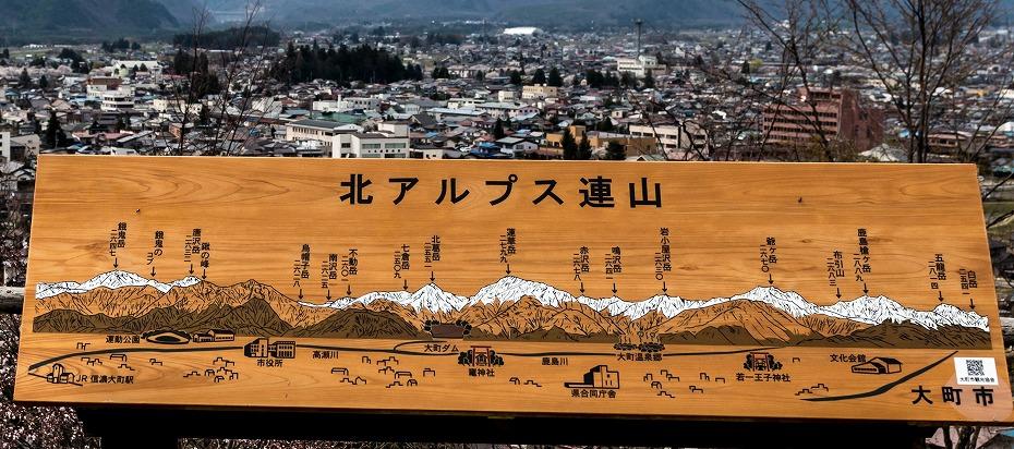 2016.04.16大町公園付近からの桜6