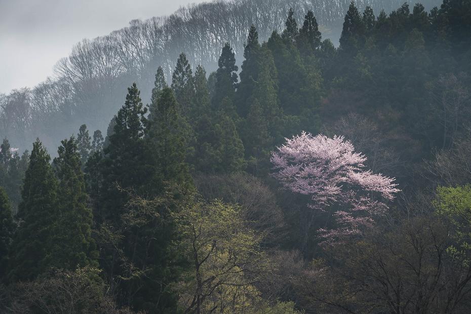2016.04.24小谷村の風景5