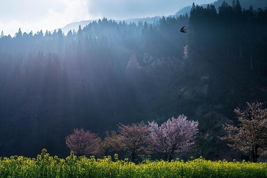 2016.04.24小谷村の風景