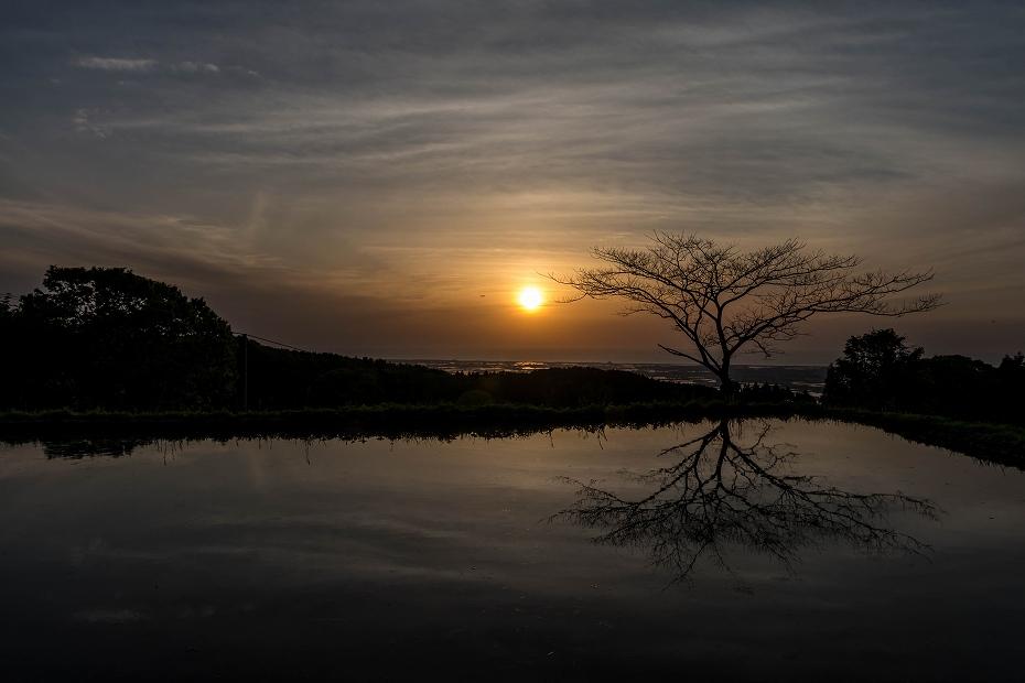 2016.05.05水田と夕焼け2
