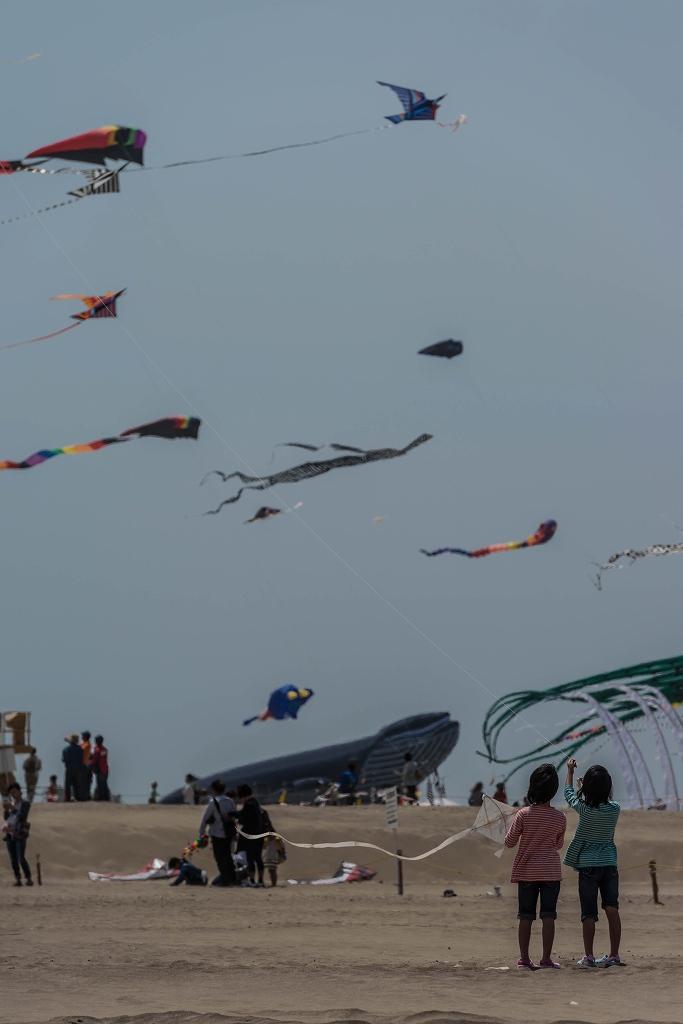 2016.05.08世界の凧の祭典8