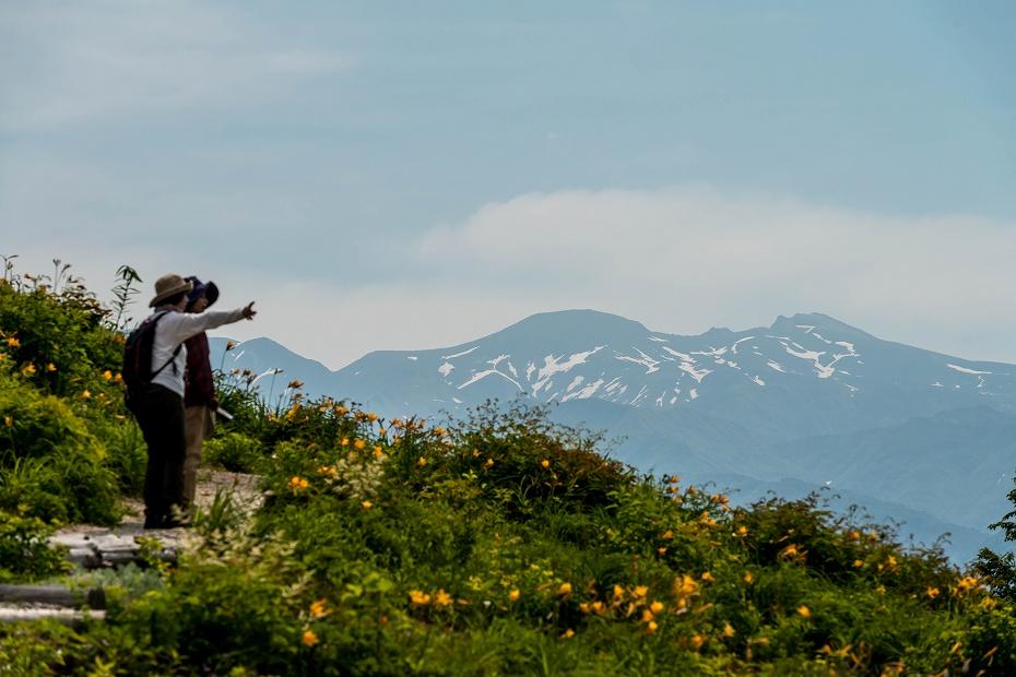2016.06.06白山とニッコウキスゲ8