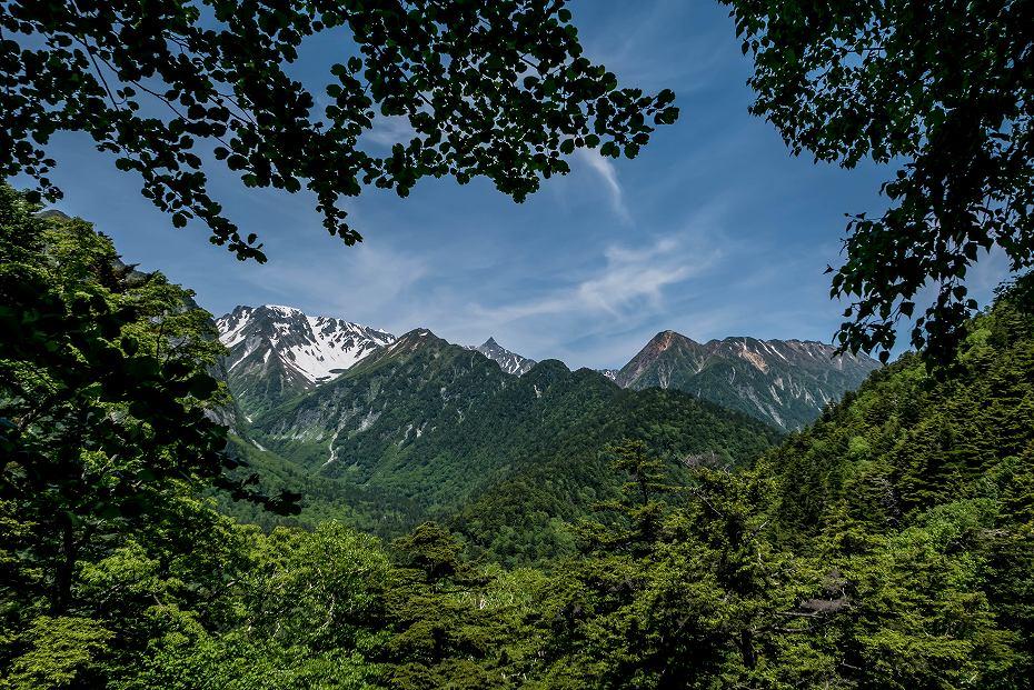 2016.06.11蝶ケ岳下山16