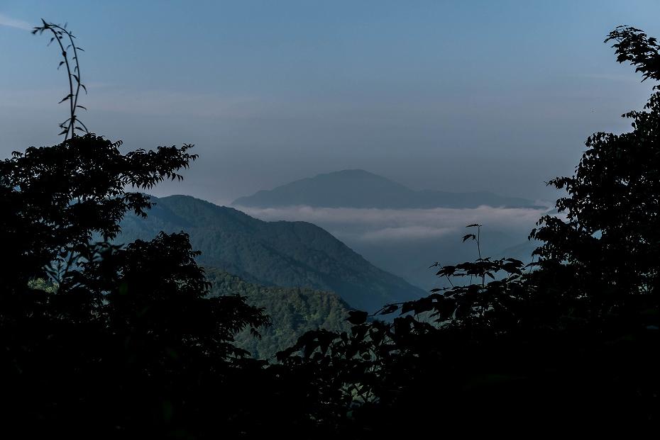 2016.06.18登山口~3.5km地点7
