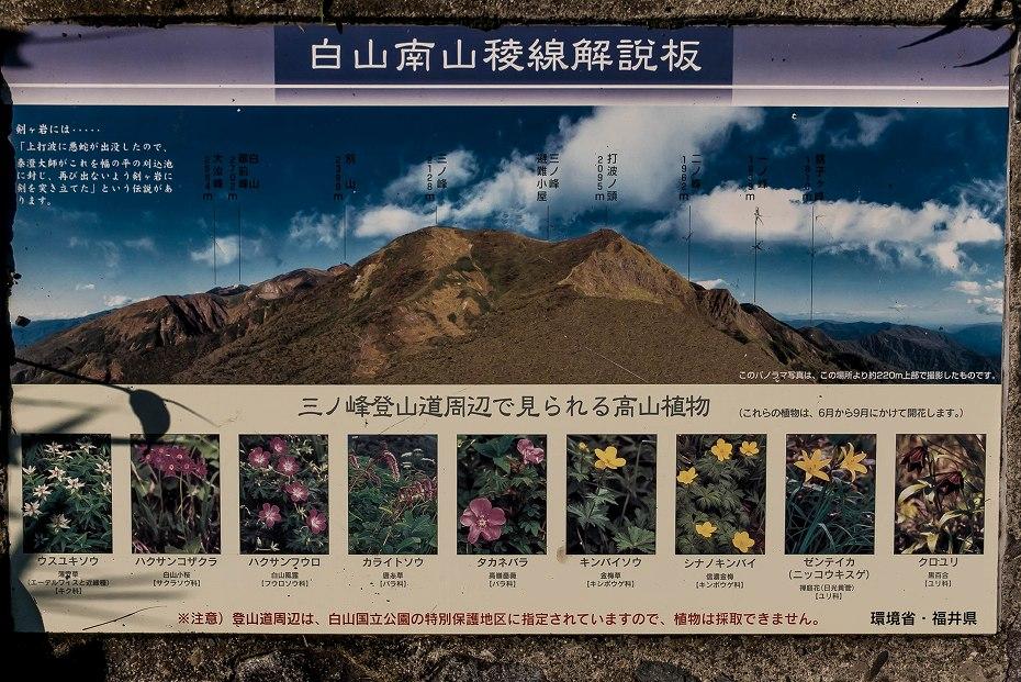 2016.06.183.5km地点~三ノ峰避難小屋手前6
