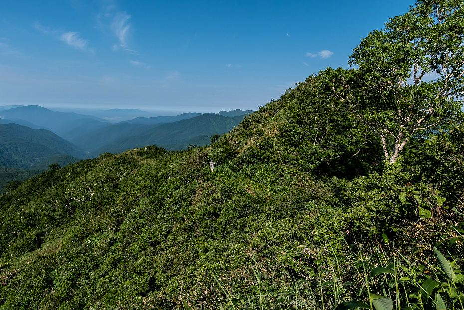 2016.06.183.5km地点~三ノ峰避難小屋手前3