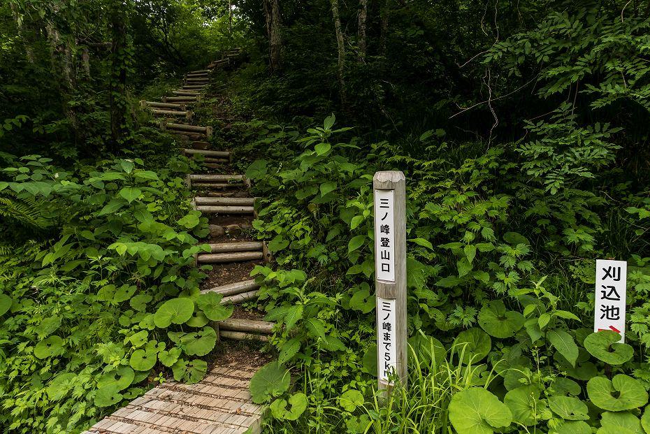 2016.06.18別山~上小池登山口20
