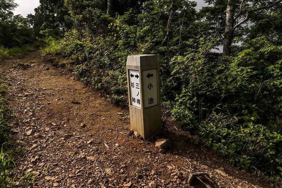 2016.06.18別山~上小池登山口16