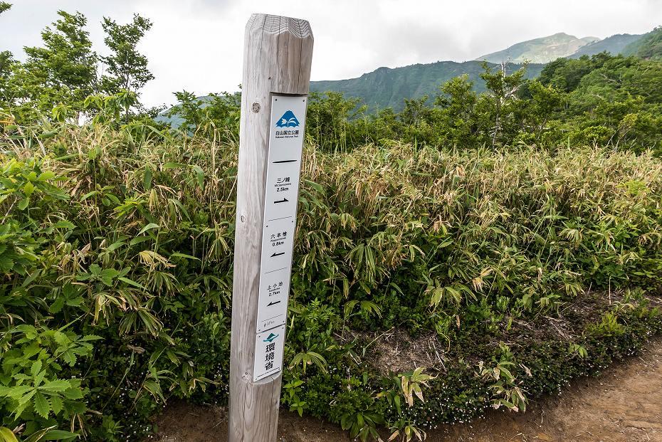 2016.06.18別山~上小池登山口14