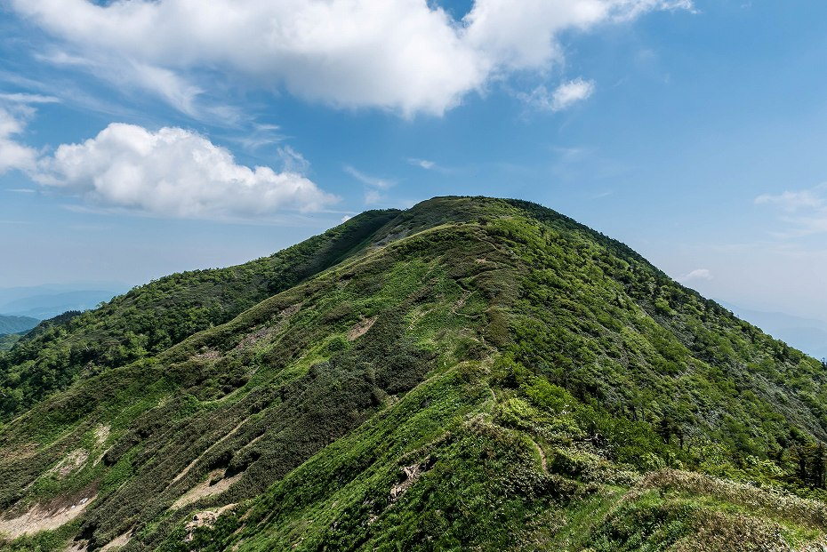 2016.06.18別山~上小池登山口9