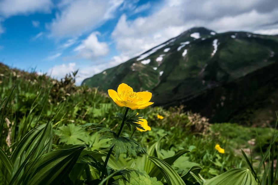 2016.06.27別山登山_油坂の頭~天池4
